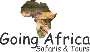 Going AfricaSafaris & Tours